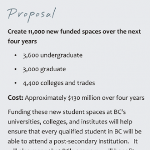 A screen capture of one of the proposals contained in the Opportunity Agenda for BC.