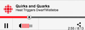 Quirks and Quarks Interview