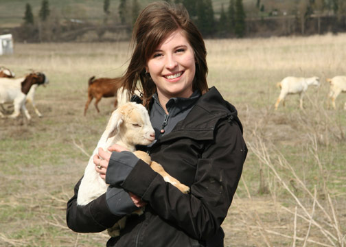 Kate Strangway studied whether goats could control invasive weeds like knapweed and thistle, as an alternative to herbicides.