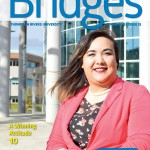 Bridges S15 Cover