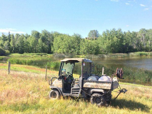 Roaming the range at Douglas Lake Ranch