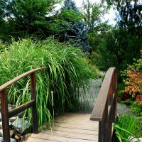 Horticulture Gardens bridge and plants
