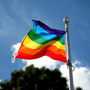 Pride Flag 2014