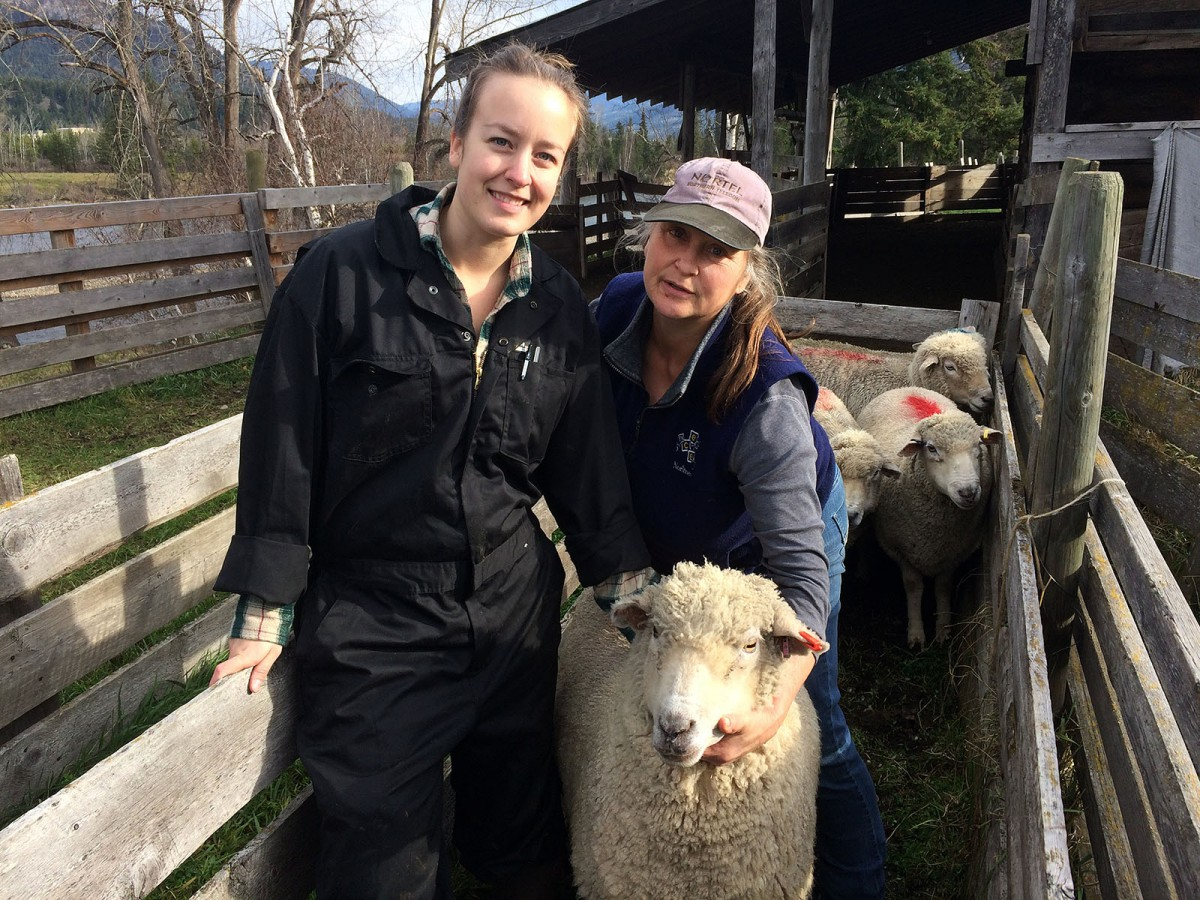 Animal Health Technology student Sarah Milnthorp, left, with Valerie Moilliet-Gerber, president of the BC Sheep Federation, are supporting Dr. Mann with his research.