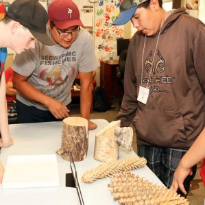 Aboriginal health and sciences camp