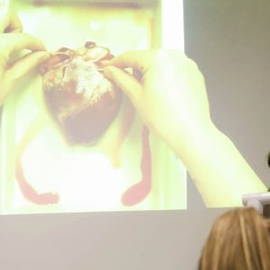Christine Miller UPrep pig heart dissection