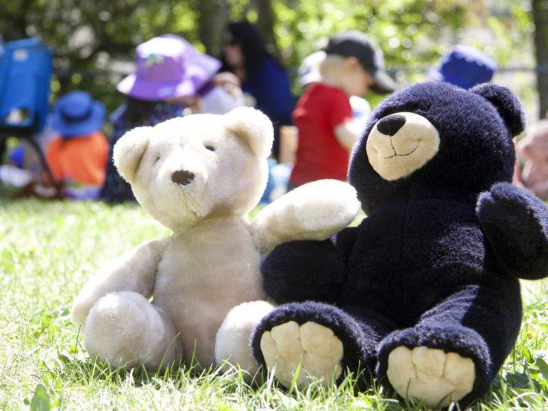 Bear Witness Day 2019