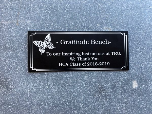 Close up of the gratitude bench