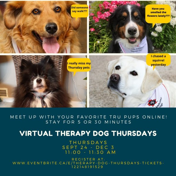 Virtual Therapy Dog Thursdays